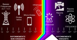 Dosimétrie des rayonnements ionisants